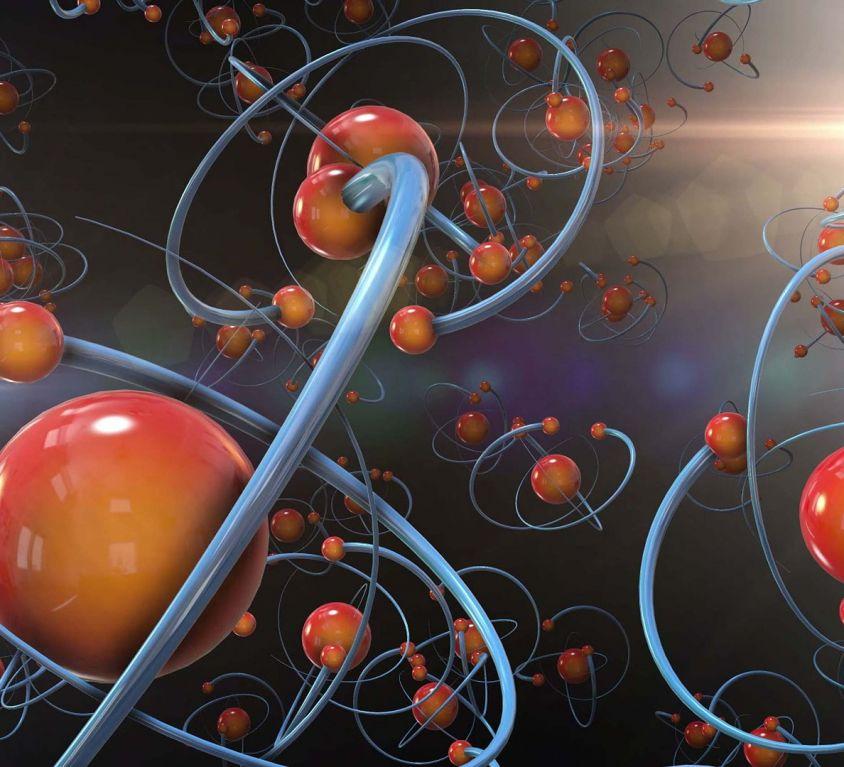 Interferenti endocrini e sistema immunitario